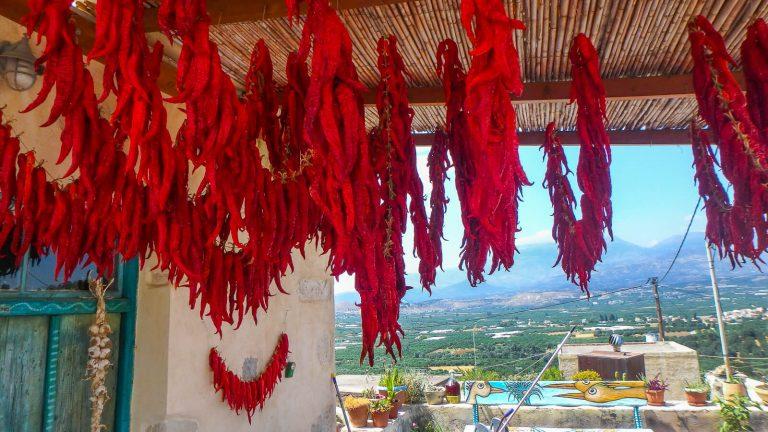 Kreta – sala, bet ji tokio dydžio ir tokios gilios istorijos, kad atrodo atsidūrei atskirame žemyne. Todėl keliaujant ilsėtis į Kretą praverstų žinoti daugiau. Kreta, Graikija | Mano Kreta